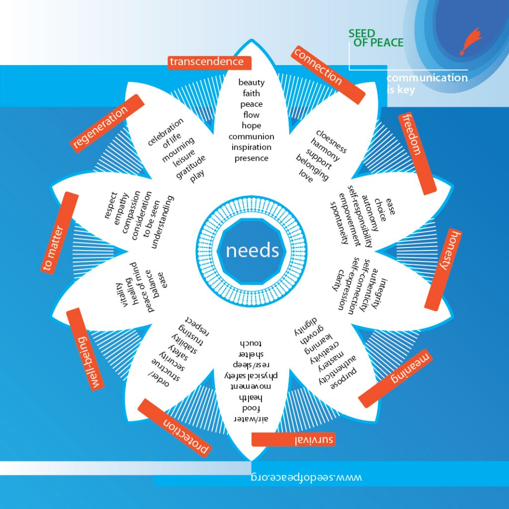 Training diagram: a mandala of needs