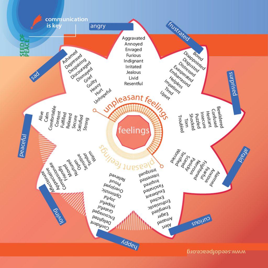Training diagram: a mandala of feelings