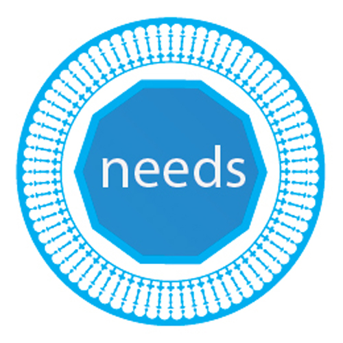 Seed of Peace: 'needs' graphic